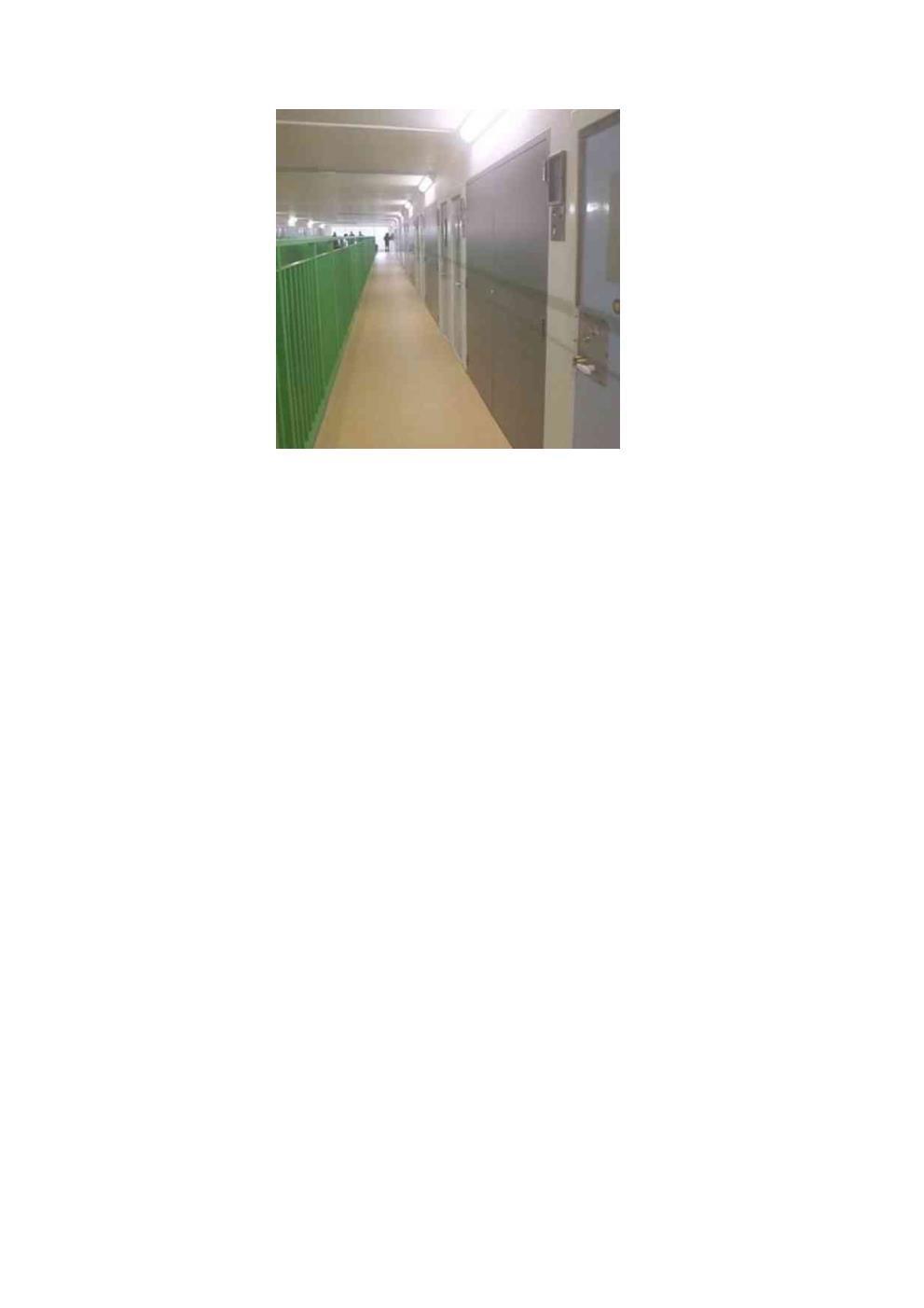 9D026D - Steel Service Duct Door Pair FD60